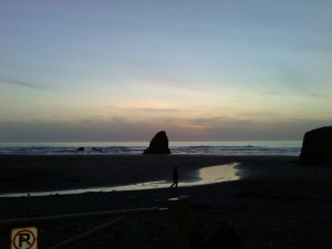 Northern California Shoreline (c) Copyright Samantha J. Penhale